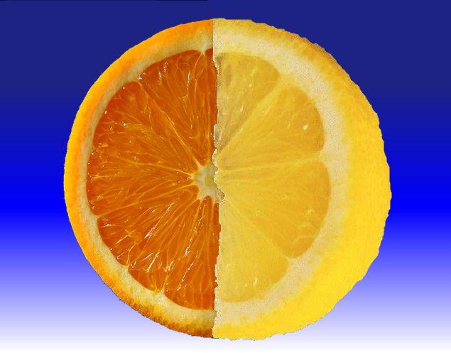Orange - Citron